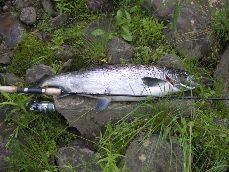 блесна на ладожского лосося