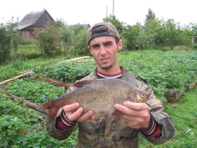 рыбалка на оредеже 2016