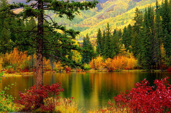Красота природы фото