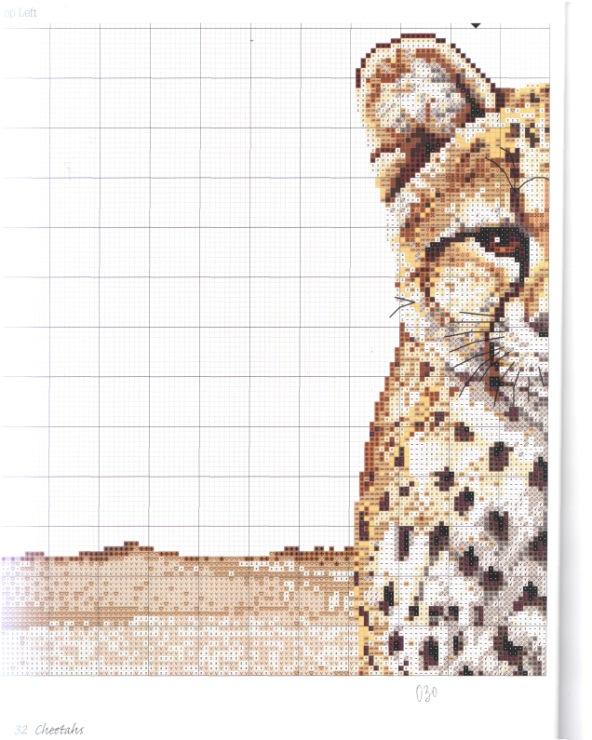 Схемы вышивки «африка» - Вышивка крестом 59